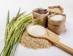 Jasmine rice, Coarse rice Brown Rice