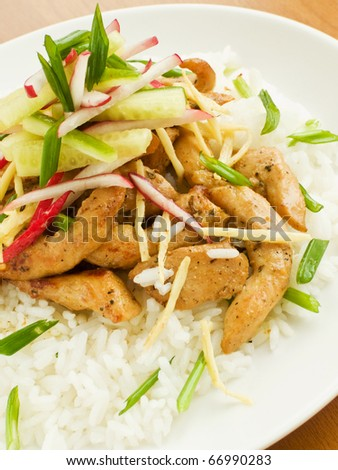 Jasmine rice with chicken and vegetables. Shallow dof.