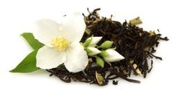 jasmine tea with fresh jasmine flowers