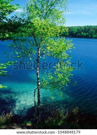 Jasne Lake, Reserve Jasne, Warmia, Ilawskie lake district, Poland, polish Zdjęcia stock ©