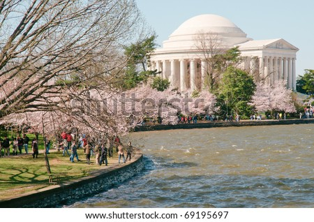 Jefferson Memorial and the Tidal Basin during the National Cherry Blossom Festival