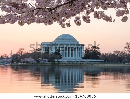 Jefferson Memorial at dawn by Tidal Basin and surrounded by pink Japanese Cherry blossoms with the monument lit by the rising sun at dawn