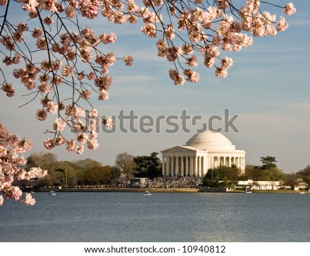 Jefferson Monument framed by cherry blossoms in April