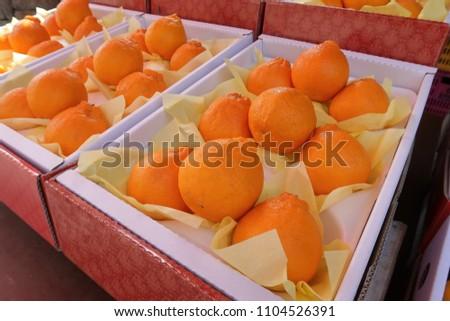 Jeju orange fruit displayed at the market #1104526391