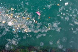 Jellyfishes and garbage floating on water. Resulting with water pollution and environmental damage to the sea, Karakoy - Istanbul.