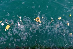 Jellyfishes and garbage floating on water. Water pollution and environmental damage to the sea, Karakoy - Istanbul.