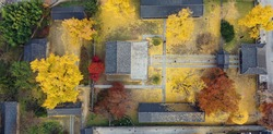 Jeonju Hyanggyo Autumn Scenery in Jeonju Hanok Village, Jeonnju-si, South Korea, taken with a drone