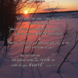 Jeremiah 29:11-13 NIV with a background of a setting sun painting the untouched snow a brilliant pink and leaving long shadows from trees cascading over the ground
