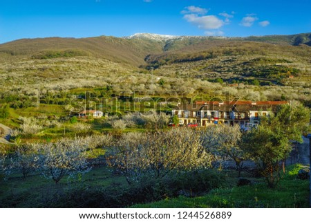 JERTE VALLEY,SIERRA DE GREDOS,CACERES,EXTREMADURA,SPAIN-MARCH,29,2017:From Jerte to Tornavacas Stock photo ©