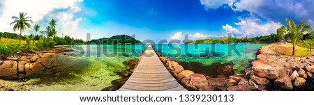 Jetty to a tropical beach #1339230113
