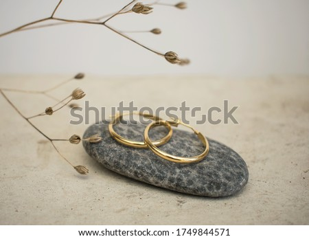 Jewellery setup. Jewelry fashion photography. Earrings fashion photography.  Earrings presented on a stone with a branch in the background.  Foto stock ©