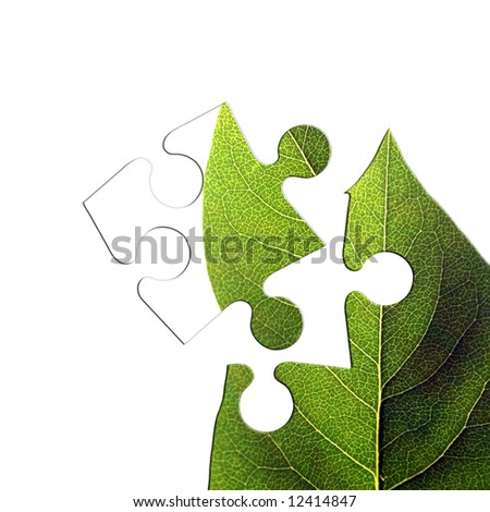 Jigsaw piece of isolated green leaf on white