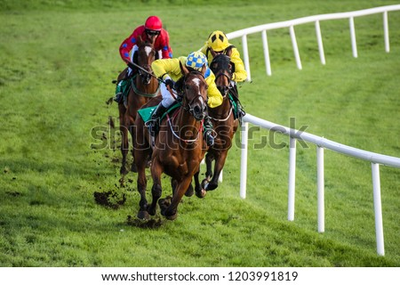 Jockey and race horse taking the lead in a race #1203991819