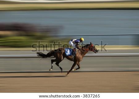 Jockey on a horse racing on race track