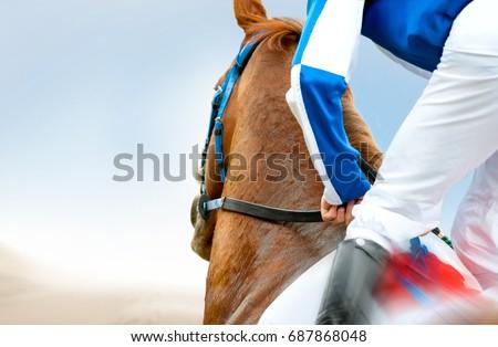 jockey on a racehorse closeup #687868048