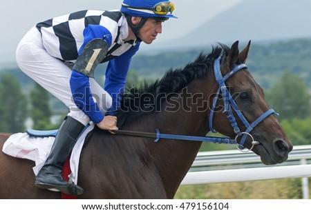 Jockey On HorseHippodrome Of Pyatigorsk Northern Caucasus Season 2016