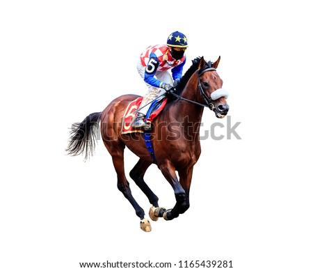 jockey riding a horse rides  isolated on white background