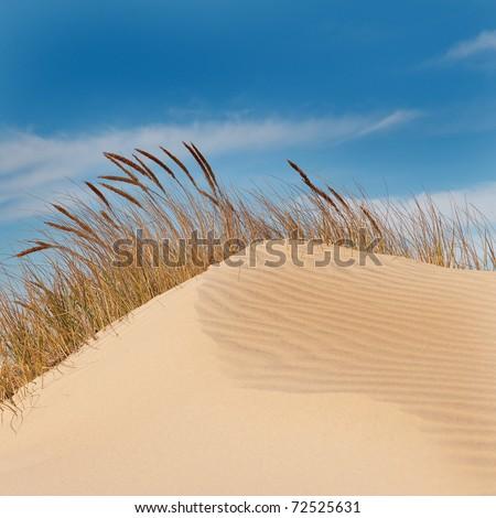 Jockey's Ridge Sand Dune in the Outer Banks, North Carolina. - stock photo