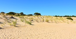 Jockey's Ridge State Park, North Carolina