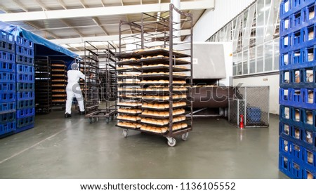 Johannesburg, South Africa - 9 March, 2015: Industrial bread making factory. Racks of freshly baked bread.