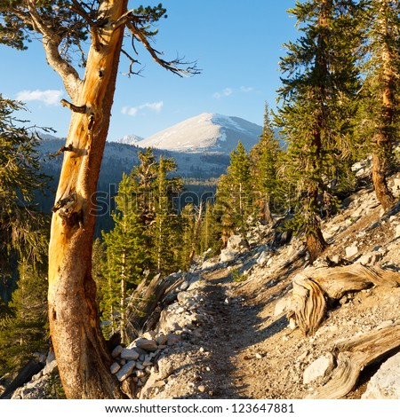 John Muir Trail & Pacific Crest Trail in the Sierra Nevada, California, USA