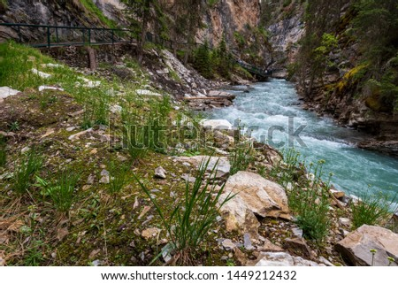 Johnston Canyon trail in Banff National Park, Canada. #1449212432