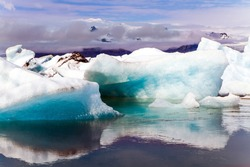 Jokulsaurloun - the largest glacial lagoon in Iceland. Cold early summer morning. White and blue icebergs and ice floes float in cold water. The concept of extreme, northern and photo tourism