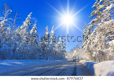 Jolly Winter and Sparkling Snowy Trees