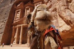 Jordan Desert City Petra