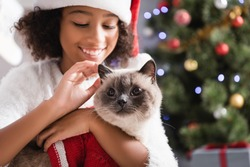 joyful african american girl in santa hat stroking fluffy cat on blurred background