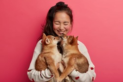 Joyful brunette young woman with pony tail holds two shiba inu puppies, expresses love to animals, wears sweater, stands over plane bright pink background. People, animals and friendship concept
