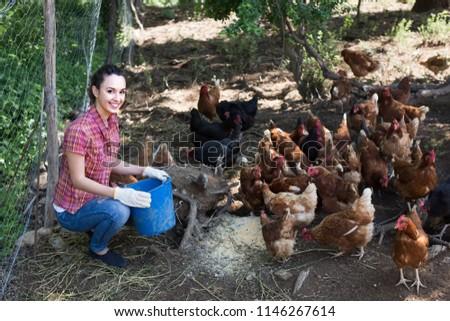 Joyful young female farmer with bucket feeding chickens on farm yard  #1146267614