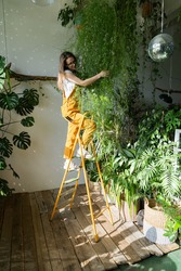 Joyful young woman gardener in orange overalls standing on a stepladder, embracing lush asparagus fern houseplant, in her flower store. Greenery at home. Love of plants. Indoor cozy garden.