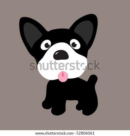 JPEG Boston Terrier Puppy