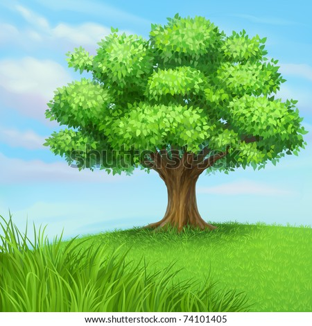 jpeg summer tree at green meadow. jpg
