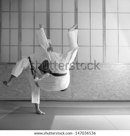 Judo background