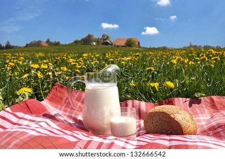 Jug of milk and bread on the spring meadow. Emmental region, Switzerland