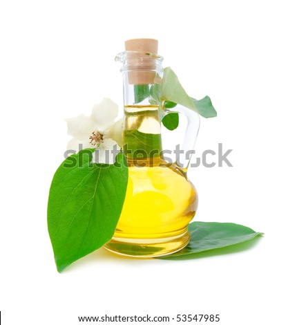 Jug with vegetable oil and a beautiful white flower on a branch
