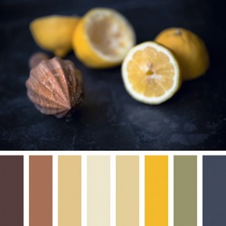 Juicing fresh lemons with a wooden juicer, focus on tip of juicer. in a colour palette with complimentary colour swatches.