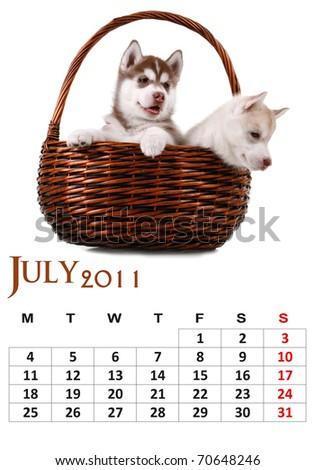 July 2011 calendar with Siberian Husky puppy
