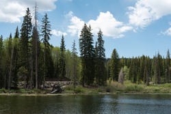 Jumbo Reservoir in the Mesa Lakes group on Western Colorado's Grand Mesa in early summer