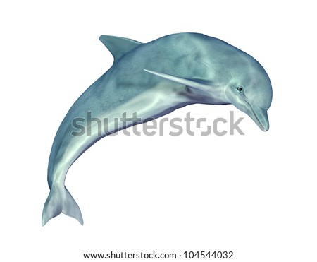 Jumping Dolphin Computer generated 3D illustration