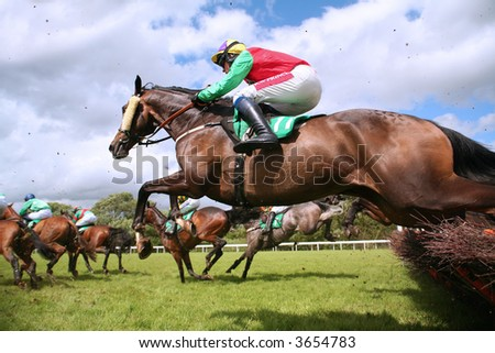jumping horse - stock photo