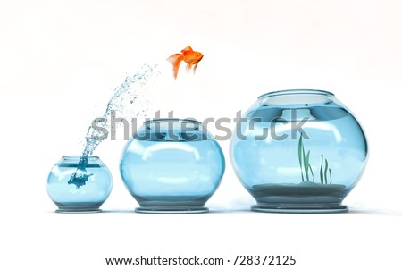Jumping to the highest level - goldfish jumping in a bigger bowl - aspiration and achievement concept. 3d render illustartion stock photo