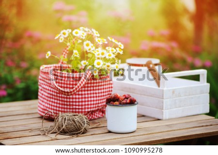 june or july garden scene with fresh picked organic wild strawberry and chamomile flowers on wooden table outdoor. Summertime still life, healthy country living on farm concept #1090995278