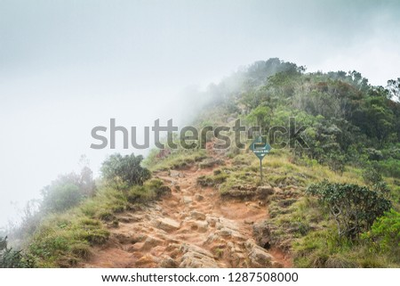 Jungle in the clouds. Pointer to World's End Drop, Sri Lanka, Horton Plains National Park.