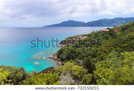 Jungle of Seychelles. The island of Mahe