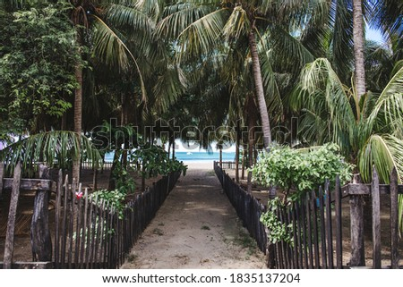 Jungle path lined by exotic palm trees down onto a paradise beach in San Juan del Sur, west Nicaragua Stock photo ©