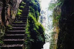 Jungle stairs in between limestone mountains and dense vegetation