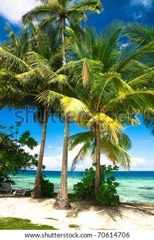 Jungle View Paradise